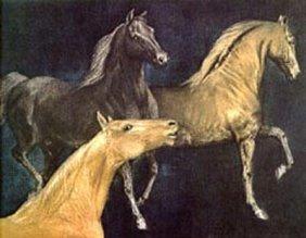 Mustangs By GH Rothe-Original Mezzotint