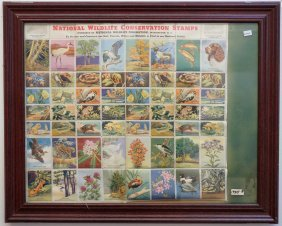 Framed Stamp Collection