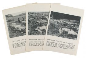 Lot Of 3 U.s. Wwii 166th Signal Photo Prints