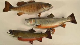 Three Fish Mounts