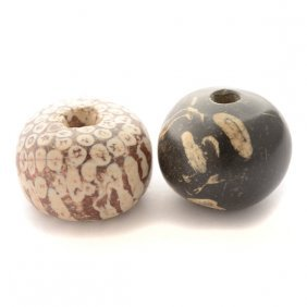 Collection Of Two Large Fossil Coral Beads.