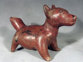 Pre Columbian Colima Dog Effigy