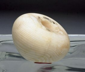Egyptian Banded Alabaster Mace Head