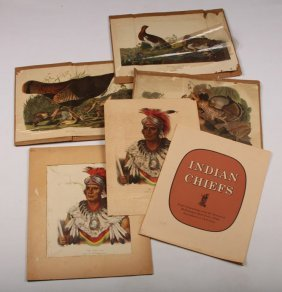 16 Mckenney & Hall Native American Lithos & More
