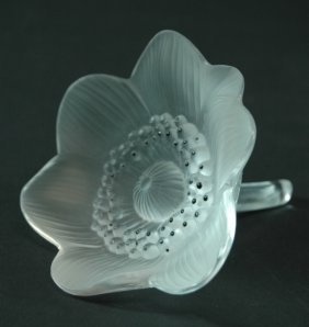Lalique Anemone Or Ouverte Glass Flower