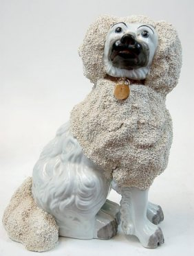"Staffordshire Spaniel With Grainey ""poodle Coat"""