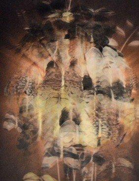 Isomorphic Holograph Print