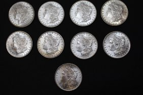 Nine 1884-o Morgan Dollars