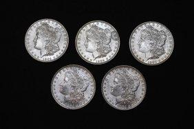 Five 1884-o Morgan Dollars