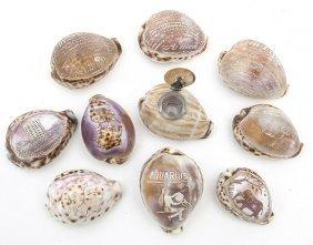 Lot Of Souvenir Cameo Shells