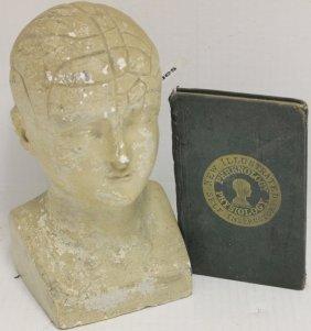 Phrenology Plaster Head, 19th C, Manufactured