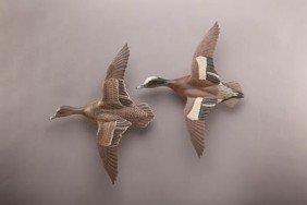 Flying Widgeon Pair