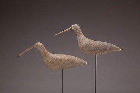 Curlew Pair