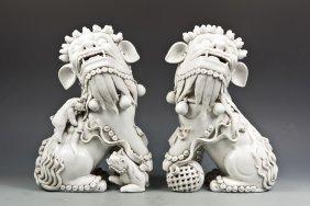 Pair Of Blanc De Chine Lions