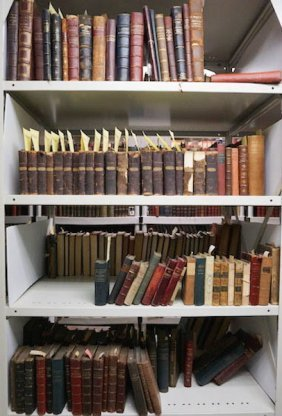 Literature/philo, In French – Approximately 150 Volumes