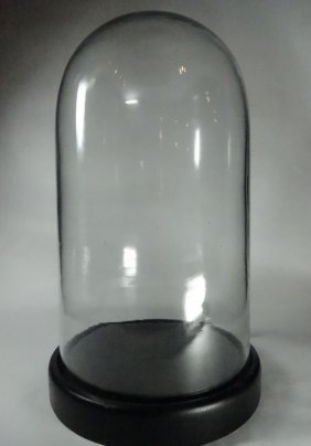 """Glass Dome Display Case, Approx 15""""h"""