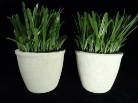 """Pair White Composite Vases With Faux Grass, Approx 8""""h"""
