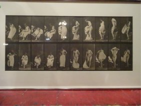 Eadweard Muybridge (1830-1904) Photographic Print,
