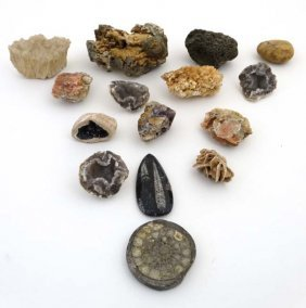 Geologist Samples, A Quantity Of Minerals , Fossils Etc