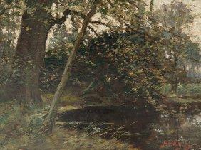 Jacques Witjens, Inside A Forest, Netherlands,