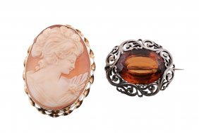 A Shell Cameo Brooch, The Oval Brooch Carved With A
