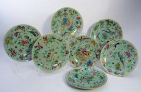 Celedon Porcelain - Dinner Plates