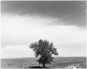 Robert Adams, Pawnee National Grassland, Colorado