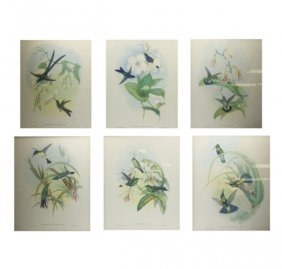 J. Gould And H.c. Richter Set Of Six Prints