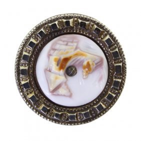 Cowrie Shell Button