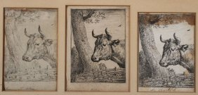 Old Master Etchings And Engravings
