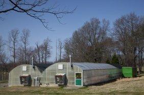 1989 Stuppy Greenhouse