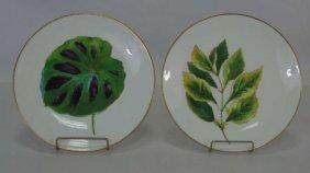 Pair Antique Hand Painted Minton Botanical Plates