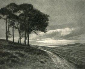 Whitehead, J.m. - Rain In The West