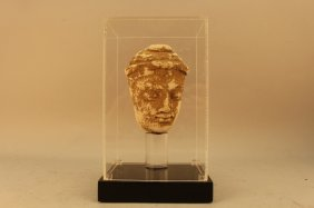Ancient Limestone Bust In Plexi-glass Display Case