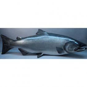 Large Atlantic Salmon Taxidermy Replica