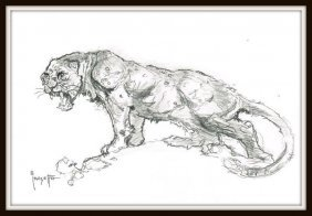 Frank Frazetta; Sabertooth Tiger Drawing.