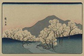 Ando Hiroshige - A Grove Of Cherry Trees (sakura Namiki