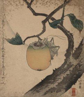 Hokusai - Grasshopper Eating Persimmon, 1850