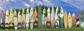 Dennis Frates. Surfboard Fence