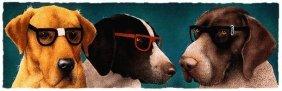 Will Bullas - The Nerd Dogs