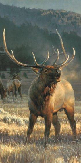 Nancy Glazier - Rocky Mountain Meadow - Detail