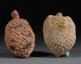 Two Petrified Pinecones Patagonia, Argentina Juras