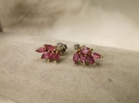 Beautiful Gold Over Sterling Ruby Diamond Earrings