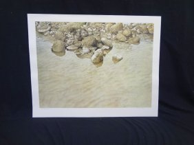 """Raymond Ching Signed Lithograph """"plover Chicks"""""""