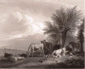 Adriaen Van De Velde. Cattle. Dutch. 1850.