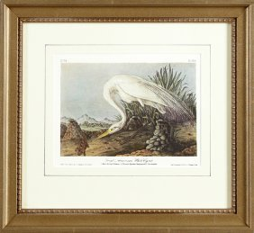 "John James Audubon (1785-1851), ""great American White"