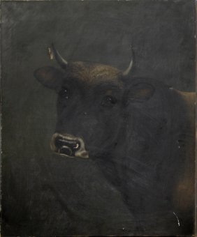 "English School, ""head Of A Bull,"" Late 19th C., Oil On"