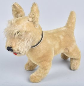 Early Mohair Terrier Dog