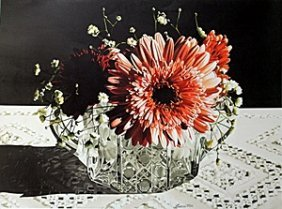 "Lithograph ""gerbera Daisy"" After Barbara Buer"