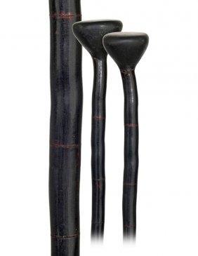 19. Black Coral Cane-19th Century-Segmented All Bla